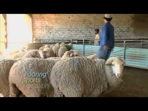 IWTO International Wool Textile Organisation - Wool Film