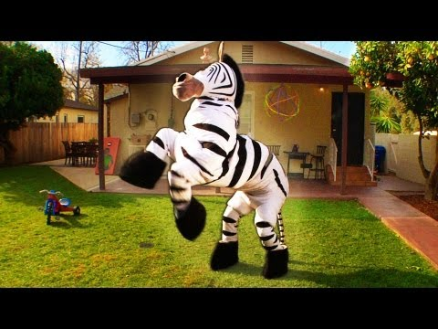 dope-zebra-rhett-link-official-original-video-.html
