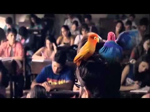 Kitkat Love Birds 30 Flv video