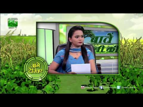 Baatein Kheti Ki: Haldi Ki Kheti  - Full Episode Green TV