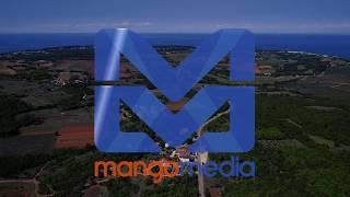 Services of Mango Media
