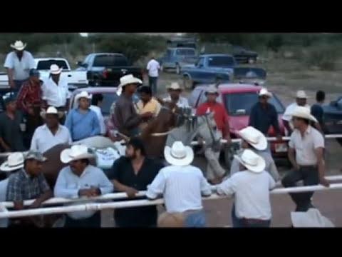 carreras de caballos en el carril los altos rio grande zacatecas