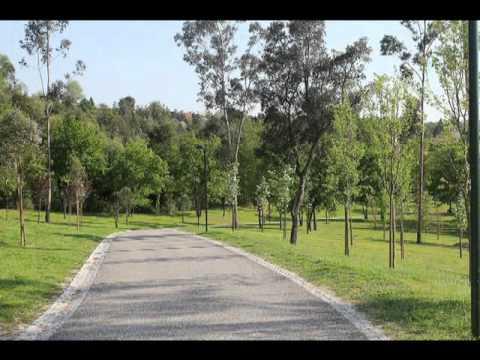O Parque da Devesa  - Vila Nova de Famalic�o