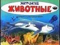 Развивающий мультик для детей! Изучаем морских животных! До 6 лет!