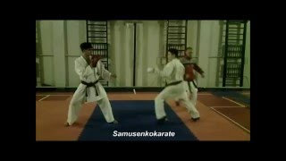 Karate training - 2  (2015)
