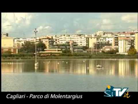 Parco di Molentargius