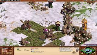 Aoe2: Expert Military Strategy (Rushing, Raiding, & Defending)