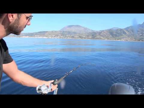 La giornata delle cernie, scuola di pesca