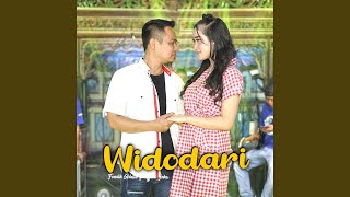 Download lagu Widodari
