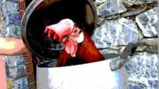 Coro Valtanaro Sezione Alessandria - Me compare Giacometo