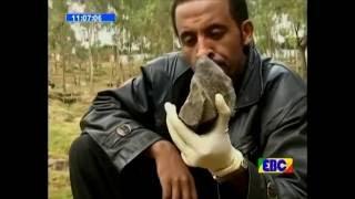 Yekurew Mister Part 2 Ethiopian EBC Drama