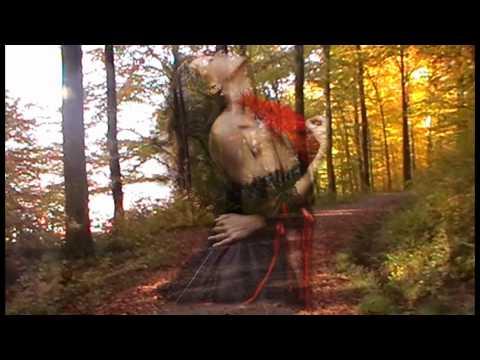 Скачать песню елена ваенга косолапая любовь