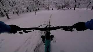 Magic Snow Ride- Yt Capra