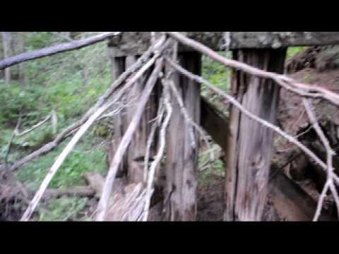 Bridge Remains, Port Arthur, Duluth & Western  Railway near Hillside, ON