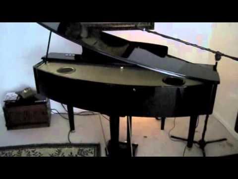 Suzuki Digital Grand Ensemble Hg E Piano