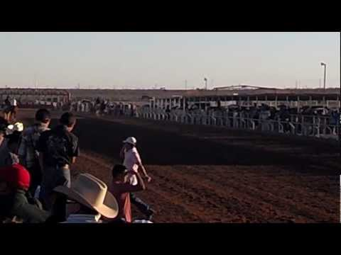 WEST TEXAS RACE TRACK ABIERTA 250yds