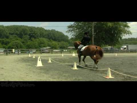 Katherine Nelson on Beloved MRF, MFS, Heavenly Waters Dressage, 6/19/2010 Video