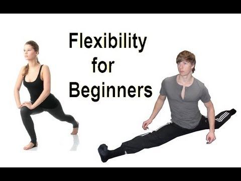 Flexible in 5 Minutes: Daily Beginner Stretching Routine!