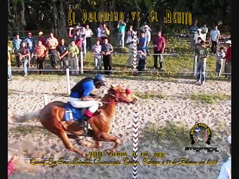 CARRIL TRES POTRILLOS 21 FEB WFOTOFINISH DESDE LA VENTA TABASCO