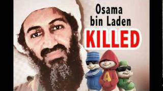 Watch Hot Rod Osama Bin Laden Is Dead video