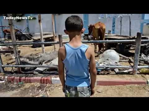 Gaza conflict US and UN condemn school shelling