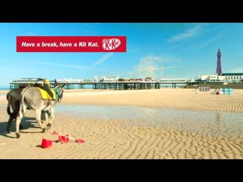 Kitkat Uk Cone Donkeys video