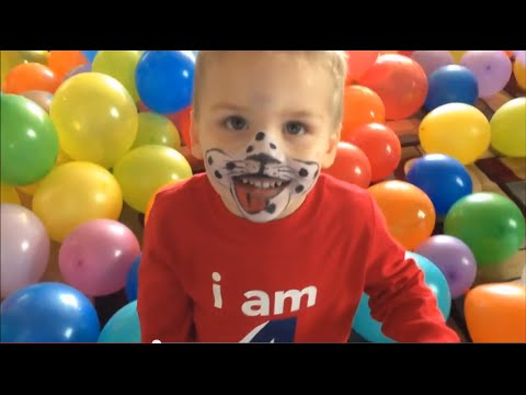 The 1,000 Balloon Birthday Party