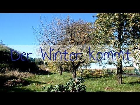 Garten im Herbst | Vorbereitungen für den Winter