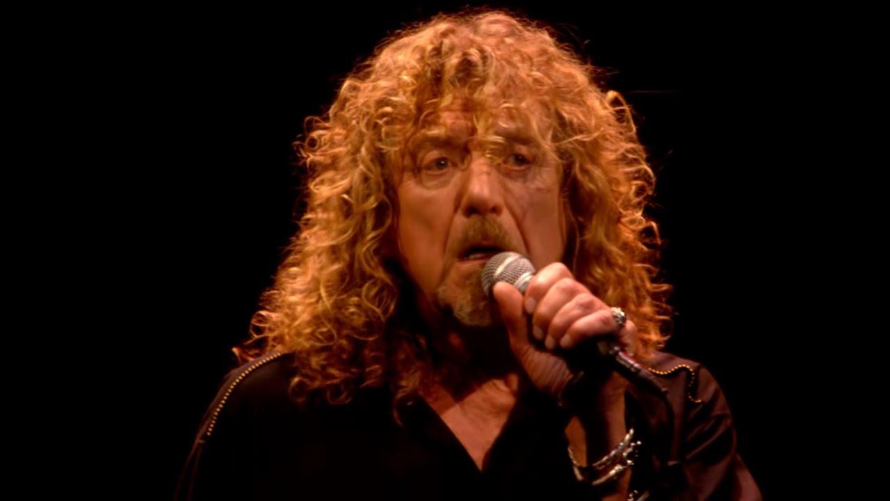 Led Zeppelin Black Dog Celebration Day
