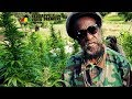 Black Uhuru - Chalice [Official Video 2018]
