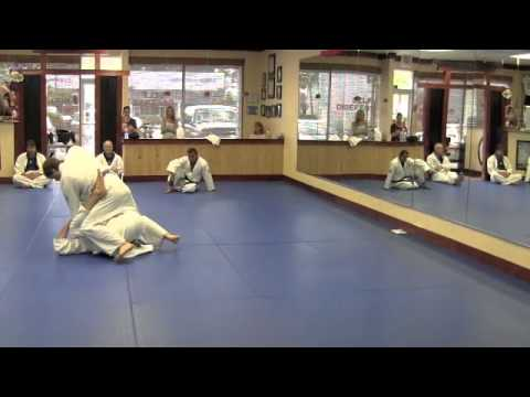 Certified Gracie Jiu-Jitsu Training Center - Destin, FL (Tour with Rener Gracie) Image 1