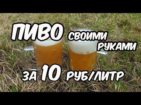Пиво своими руками за 10 рублей - 1 литр. Рецепт + Дегустация