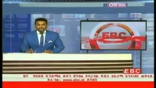 An Ethiopian regime military helicopter hijacked - EBC (state-run TV)