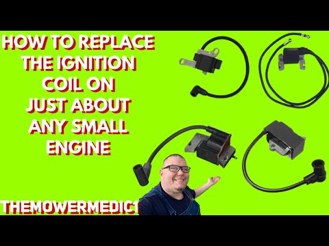 BRIGGS AND STRATTON ENGINE REPAIR   how to replace the ignition module on most 4 and 2cycle engines