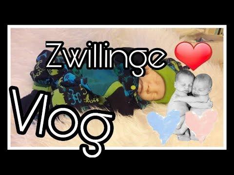 Vlog | Neuer KINDERWAGEN | Mama Alltag || Reborn Baby Deutsch