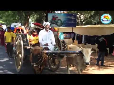 Sinhala - Tamil New Year celebration In Jaffna