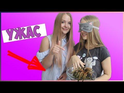 УГАДАЙ ЧТО В КОРОБКЕ ЧЕЛЕНДЖ с Алисой Лисовой/WHAT'S IN THE BOX?