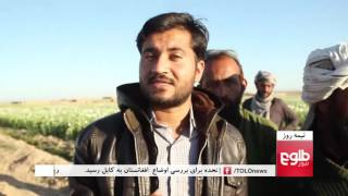 NIMA ROOZ: Afghanistan Still World's Largest Opium Producer