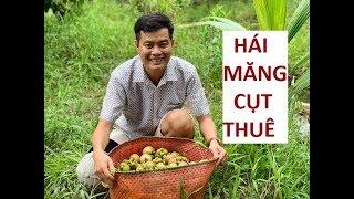 Một ngày làm nông dân với công việc hái măng cụt thuê của Khương Dừa!!!