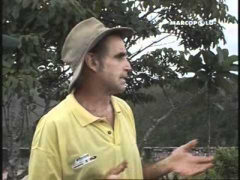 Diario di Viaggio (Canaima- Salto Aponwao Gran Sabana) Parte 4