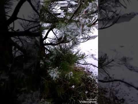 Буланова Татьяна - Белая метель