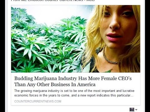 Budding Marijuana Industry Has More Female CEO's Than Any Other Business In America