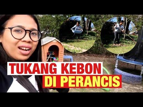 VLOG || TUKANG KEBON DI PERANCIS || BEBERES KEBON