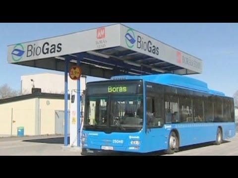 EU Commission to limit food-based biofuels