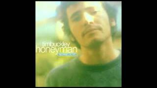 Tim Buckley - Dolphins (from the album : Honeyman)