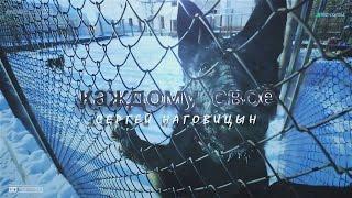 Сергей Наговицын - Каждому своё.
