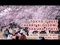 Lagu Vlog 002: [JAPAN] 8 TOKYO'S BEST CHERRY BLOSSOM SAKURA SPOTS - ANAKJAJAN.COM