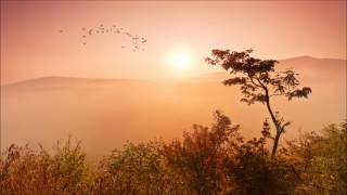 Alfoa - Savana (Hypnotic Duo & Mode MT Remix)