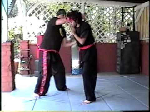 Indonesian Martial Arts.Pencak-Silat training 2 Image 1