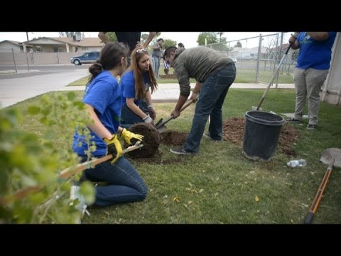 Central Union High's Green Team plants trees at El Centro elementary school